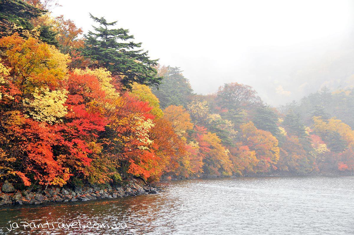 озеро-японія-клени
