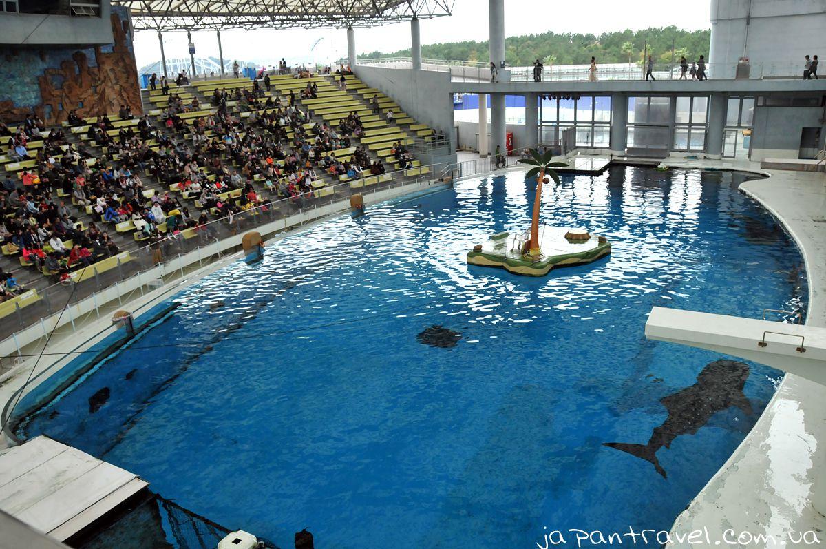 Yokohama-Hakkeijima-Sea-Paradise-вистава-японський-акваріум-мандрівки-японією