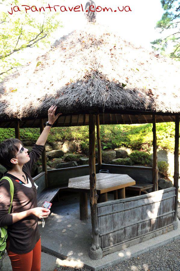 ліля-тяжка-стріха-з-гілочок-сакури-мандрівки-японією