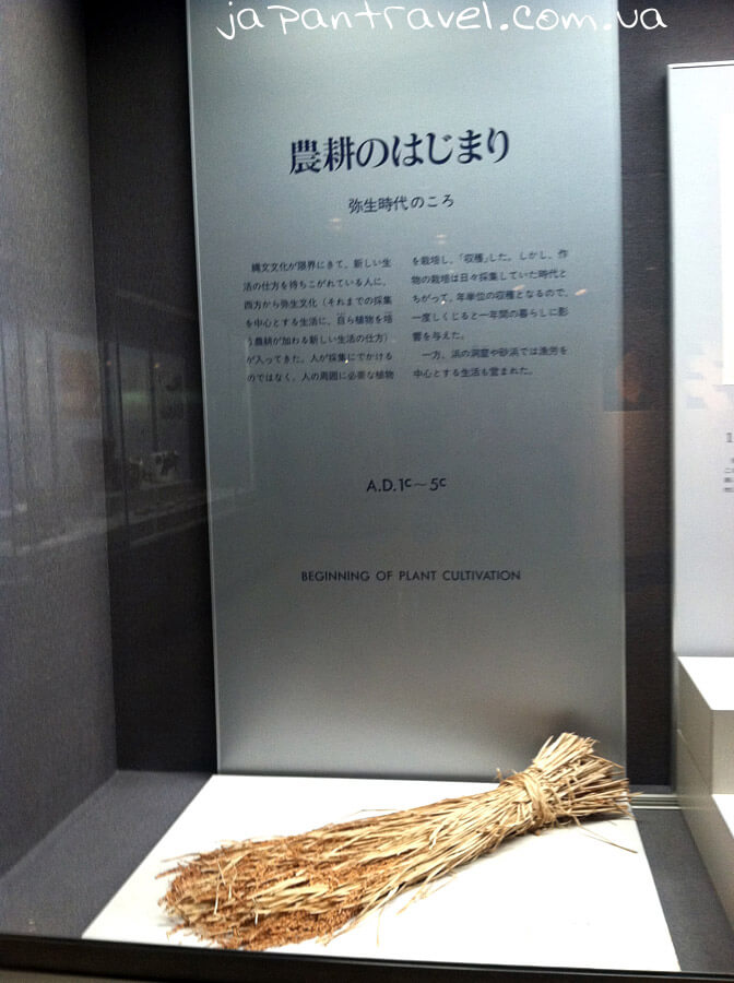 snip-symvol-pochatok-zemlerobstva-muzej-jokosuka-mandrivky-yaponijeyu